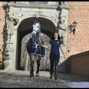 Rider by horse Grime Platinum Sport Blå