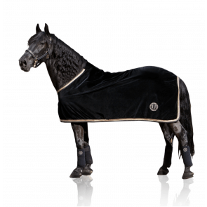 U Black - Black Gold Velvet Horse Blanket