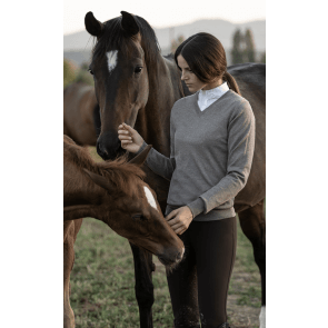 Cavalleria Toscana V-Neck Sweater w. CT Logo Brun