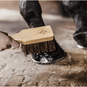 Kentucky Hoof Brush