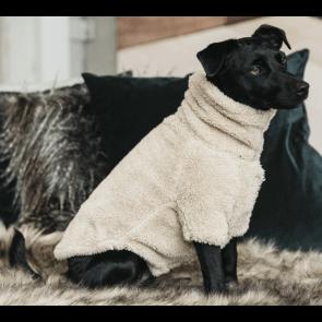 Kentucky Dog Sweater Teddy Fleece Beige