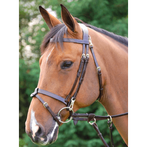 Dyon Flat flash bridle with snaps