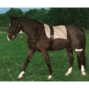Cheval longeringssystem