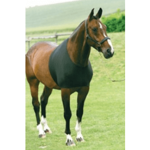 Heste undertrøje - bringebeskytter