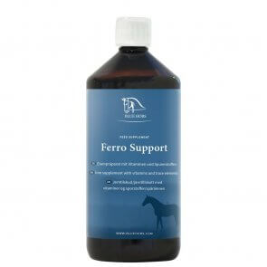 Blue Hors Ferro Support